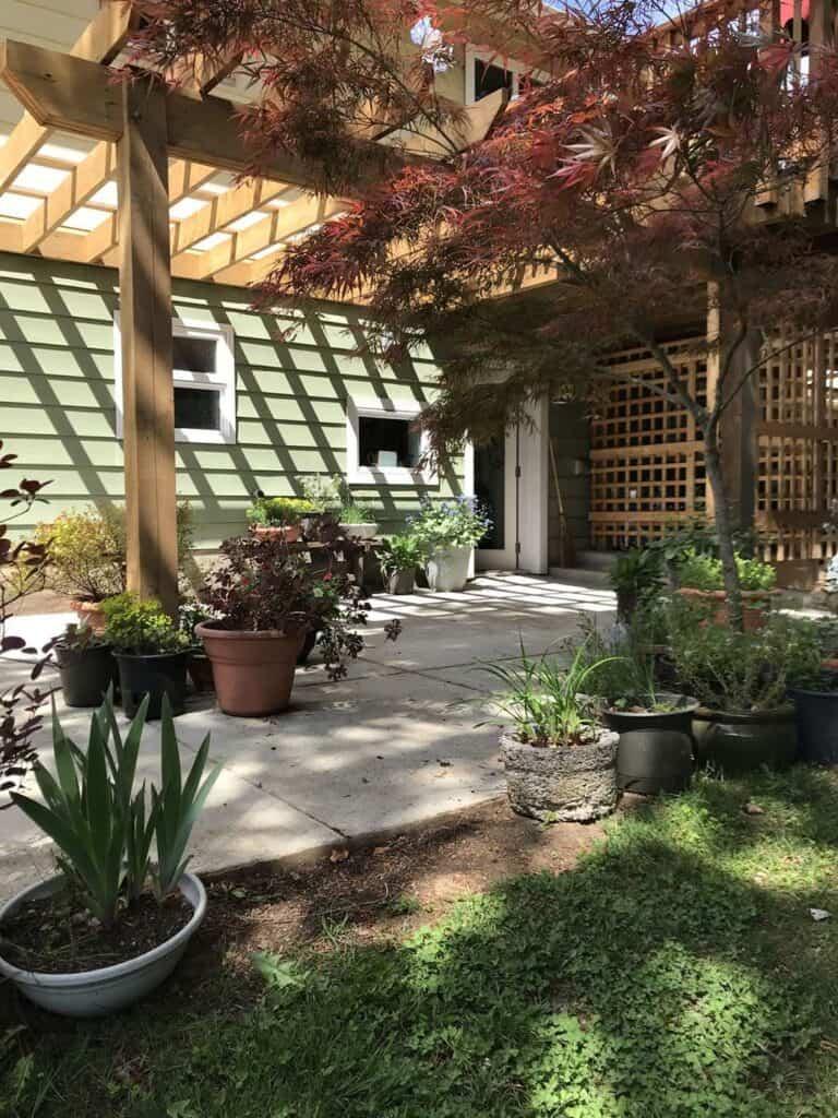 Inlaw Suite Garden Patio